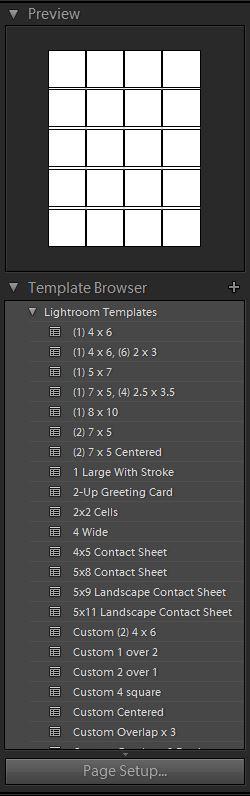 Lightroom template browser