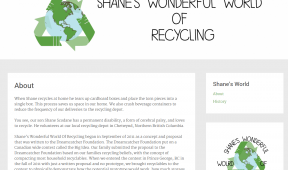 Shanes Recycling World Teition Solutions web design